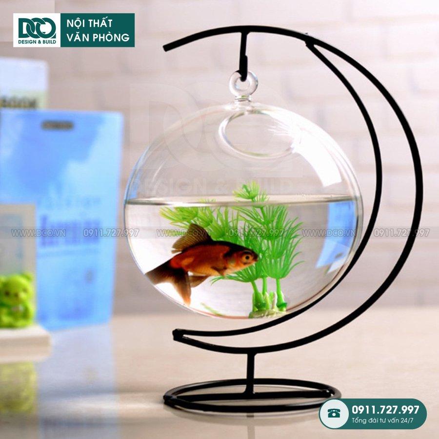 TOP 10 bể cá mini