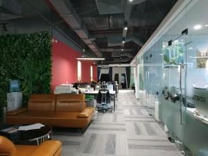 Thi công nội thất văn phòng tòa nhà Dolphin Plaza