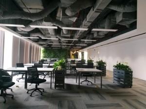 Thi công nội thất văn phòng 280 chỗ CEN X SPACE