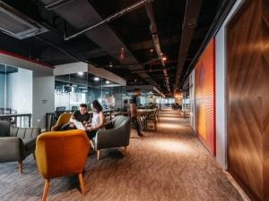 Thi công trọn gói nội thất Coworking Space