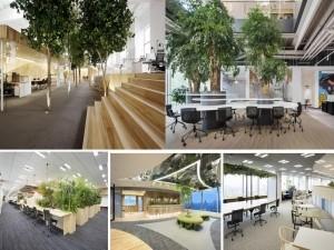 35+ Mẫu thiết kế văn phòng đẹp giúp nhân viên găn bó