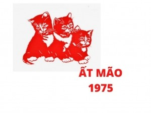 Phong thủy bàn làm việc tuổi Ất Mão 1975