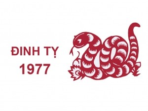 Hướng bàn làm việc tuổi Đinh Tỵ 1977