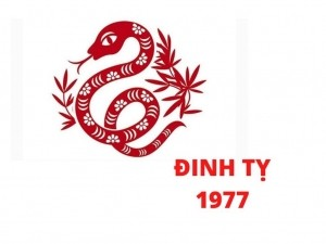 Phong thủy bàn làm việc tuổi Đinh Tỵ 1977