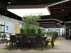 Bản vẽ thiết kế nội thất phòng họp